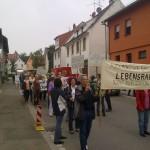 Demo in Altwiesloch 22. Juli 2011